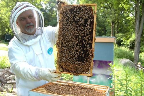 EU-Richter bestätigen Teil-Verbot für umstrittenes Insektizid